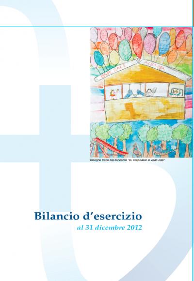 Bilancio d'esercizio 2012