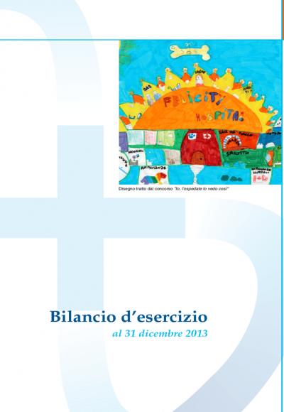 Bilancio d'esercizio 2013